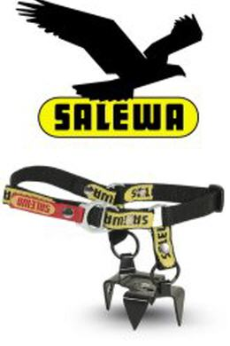 Salewa Diagonal Kurz